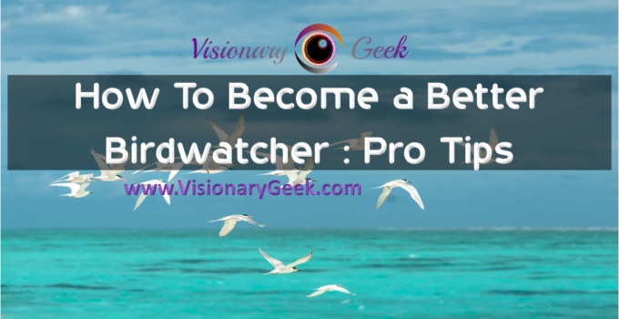 How To Become a Better Birdwatcher